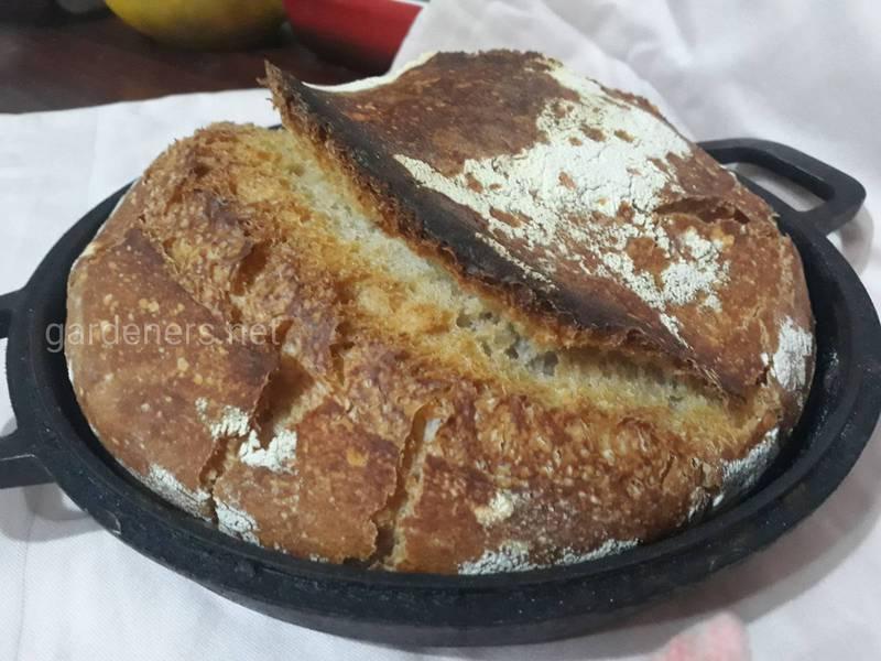 Застосування хліба