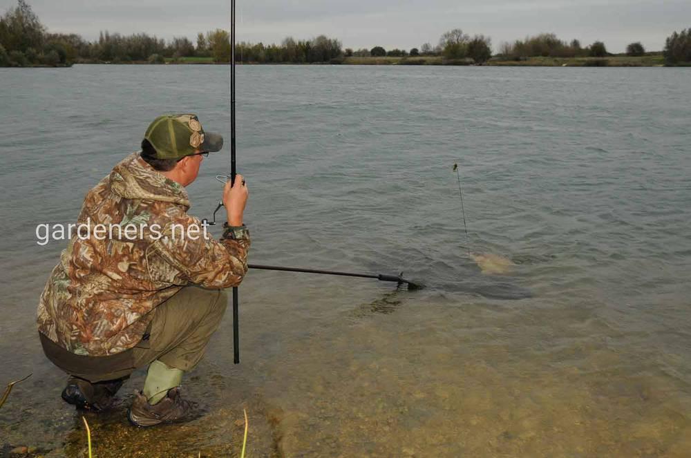 Насадка для рыбалки