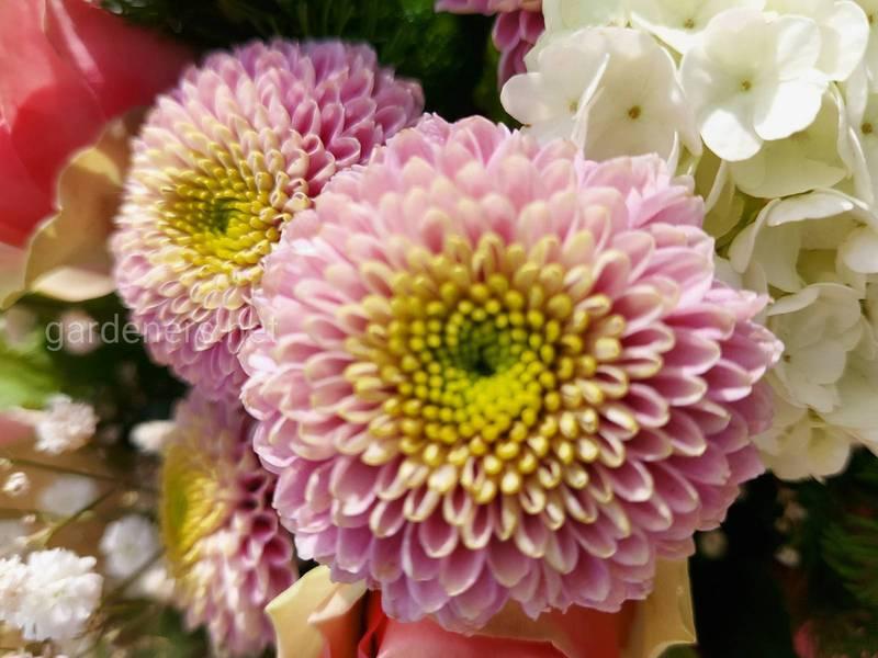 Букеты, цветочные композиции, флористика