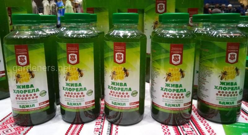 Хлорелла природный иммуностимулятор и пробиотик для пчел