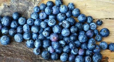 ТОП-4 лучших рецепта на основе черничных плодов для желудочно-кишечного тракта