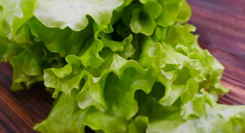 Салатные листья - спасение для вашего желудка