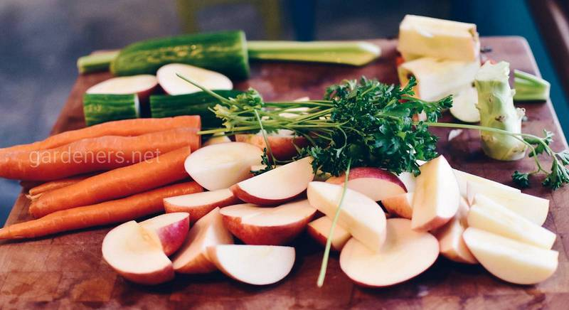 Любовь с первой ложки: ТОП-10 салатов из овощей