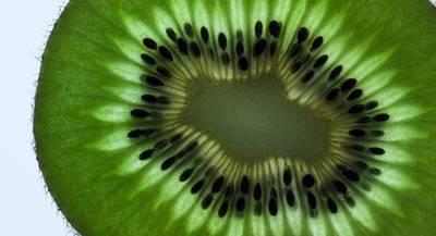 kiwi-1143717_1920.jpg