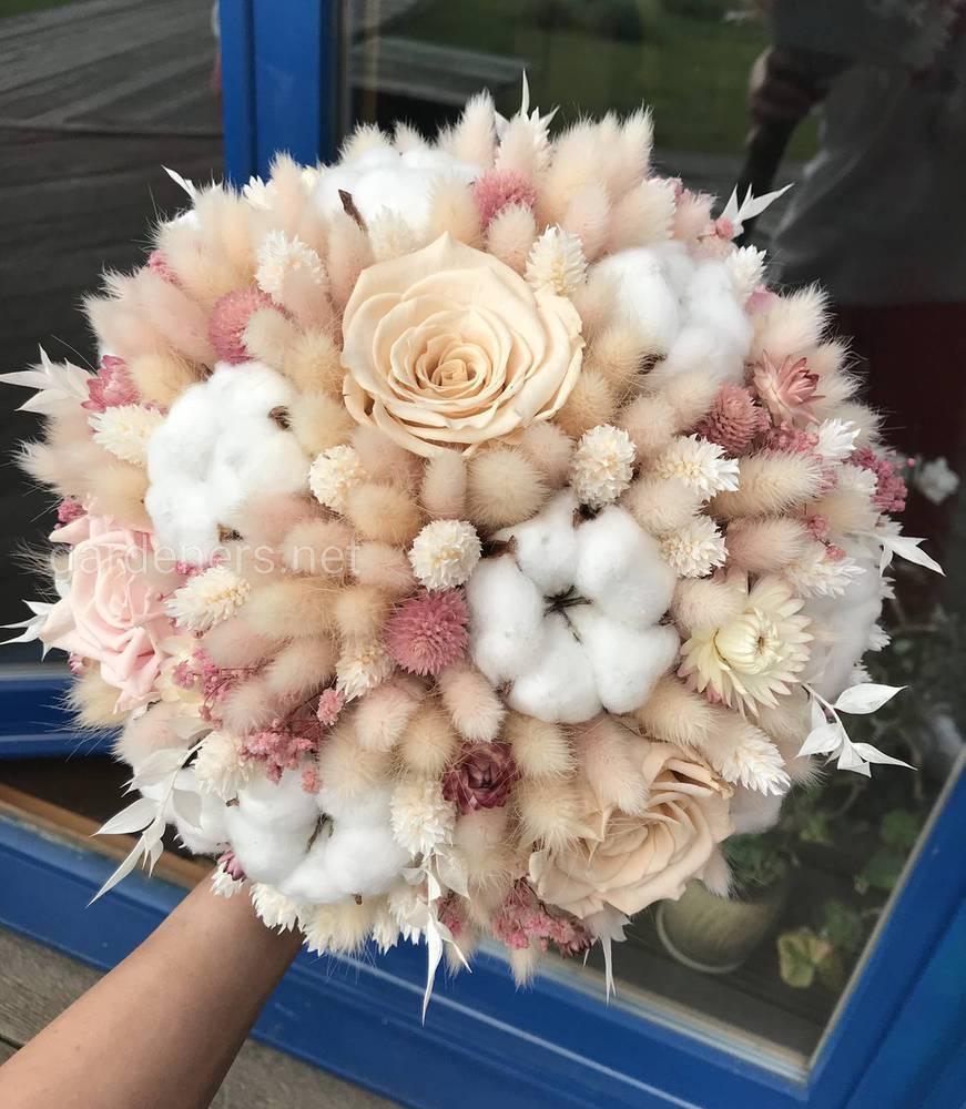 Сухоцветы - это удивительные растения с яркими неувядающими соцветиями.