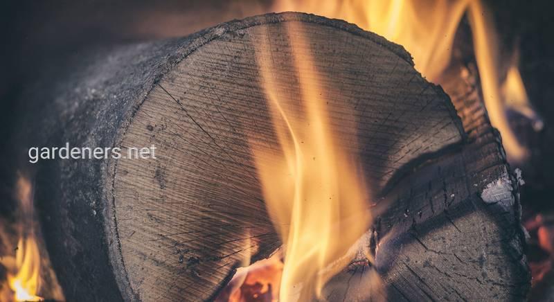 Чем выгоднее топить – дровами или брикетами