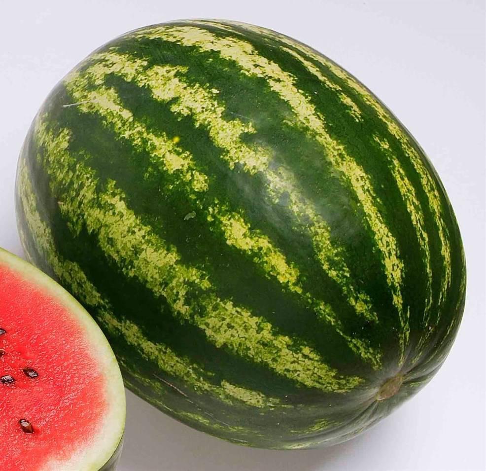 Лучшие сорта арбуза семенного типа | Огородники