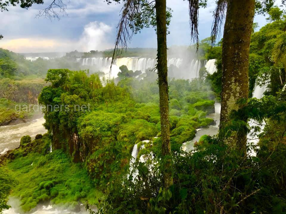 Национальный парк Игуасу, Бразилия
