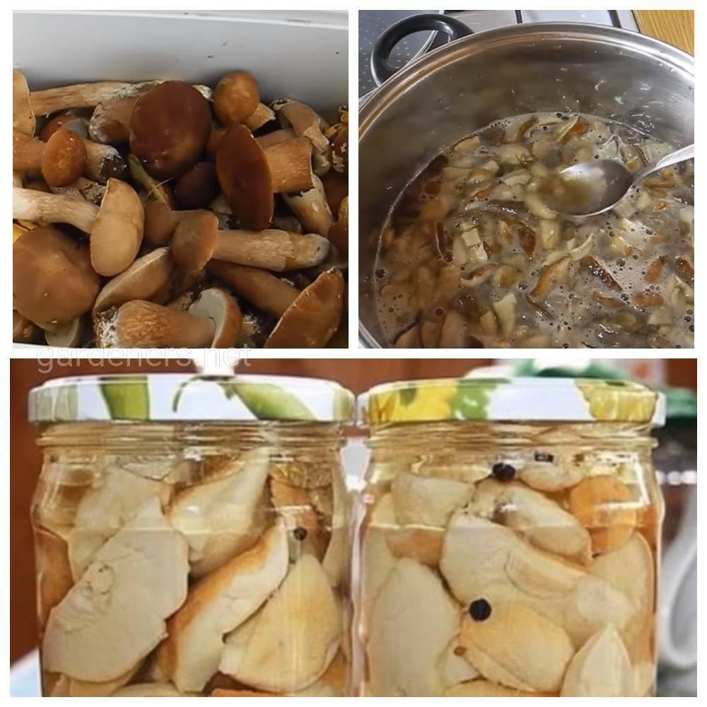 Маринование грибов без уксуса