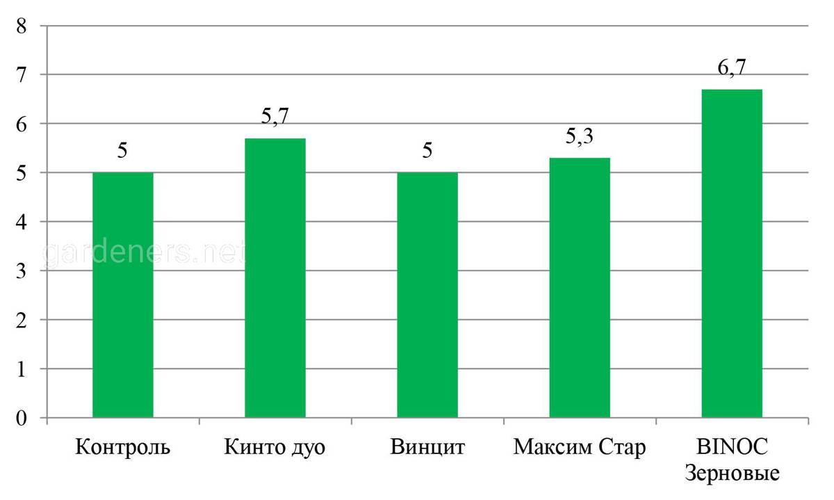 Влияние различных вариантов обработок на зимостойкость посевов озимой пшеницы