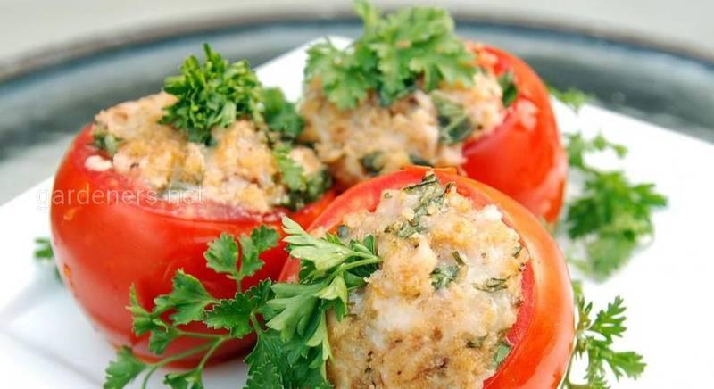 Помидоры: кулинарные идеи