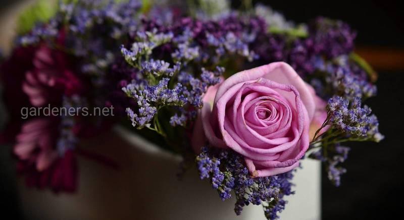 Правила выращивания цветов на срез: секреты цветоводов