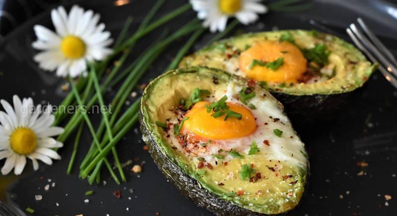 Десять вкусных и полезных рецептов с авокадо