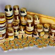 Пчела и пчеловодство