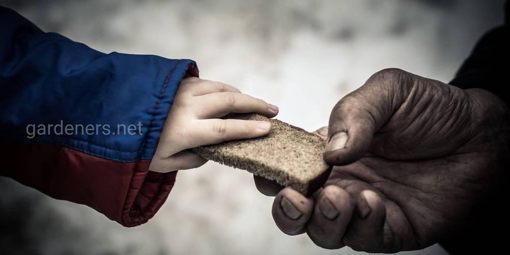 Продовольчі кризи у світі
