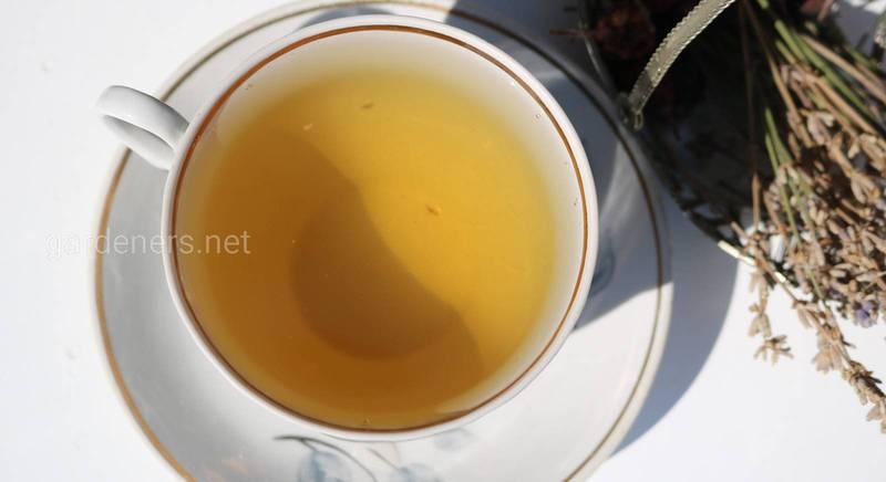 Жовтий чай - ліки на довге і здорове життя