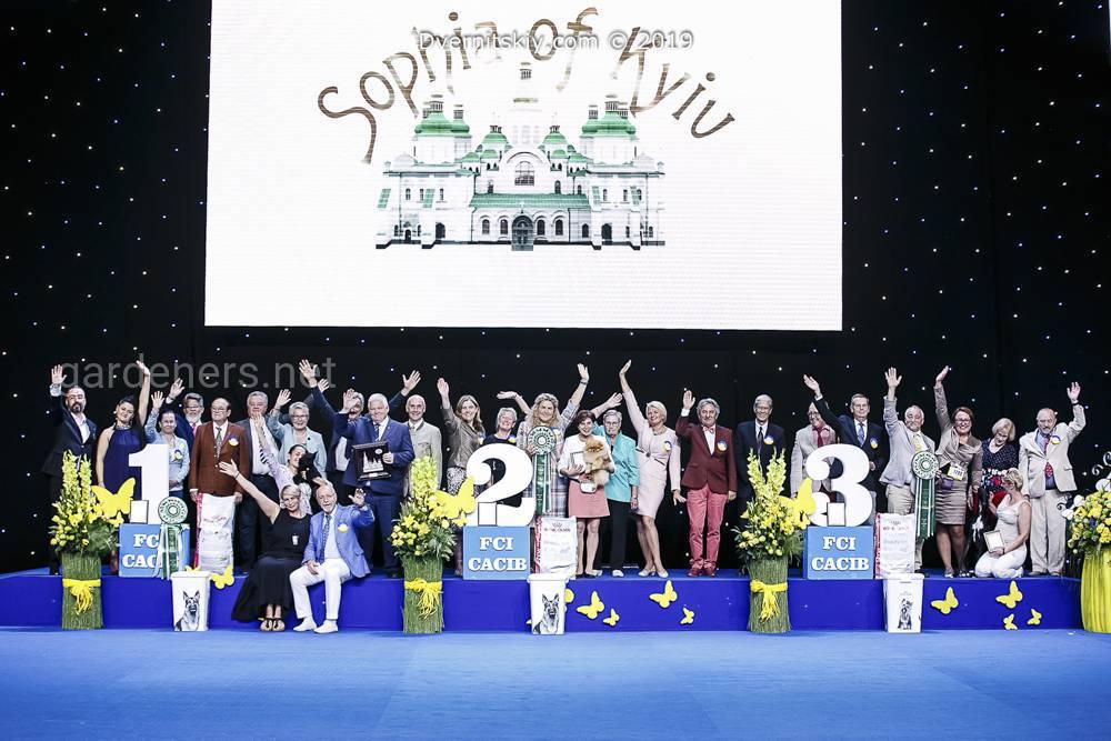 Спілка України традиційно проводила Міжнародні виставки собак усіх порід