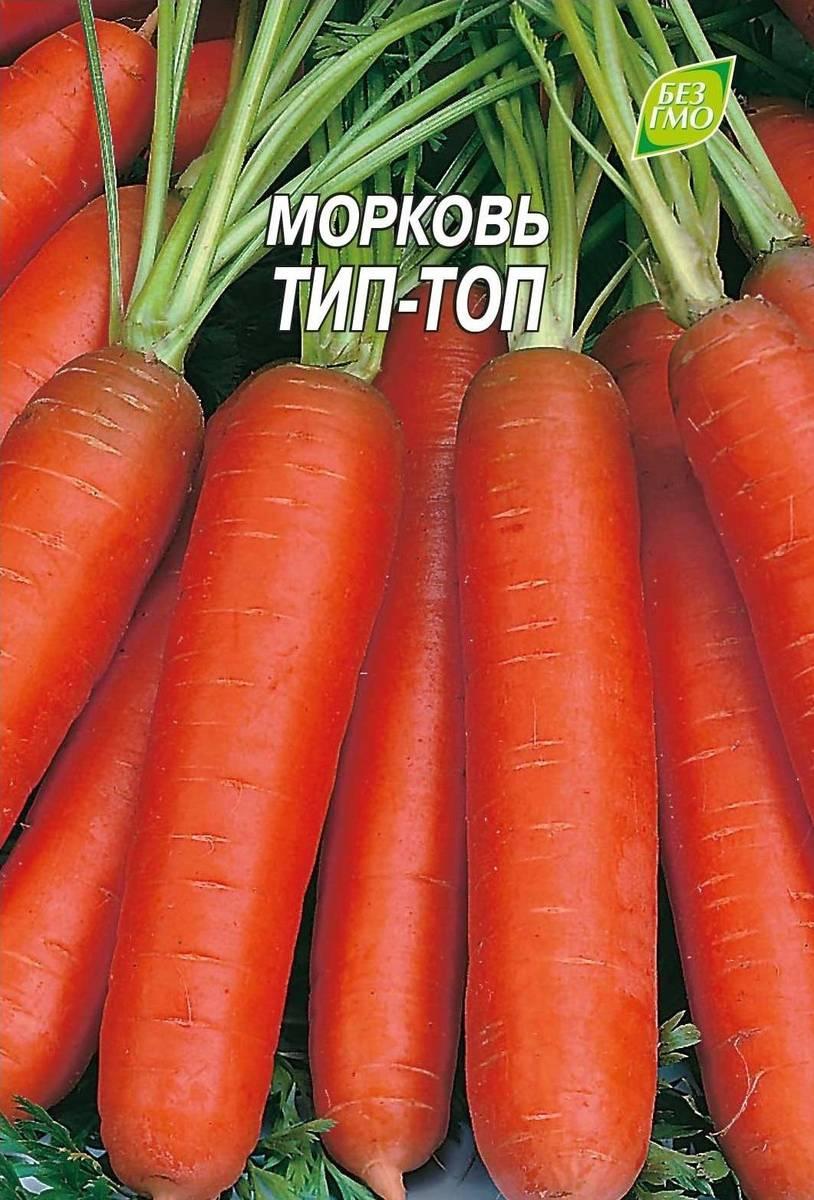 Тип-Топ