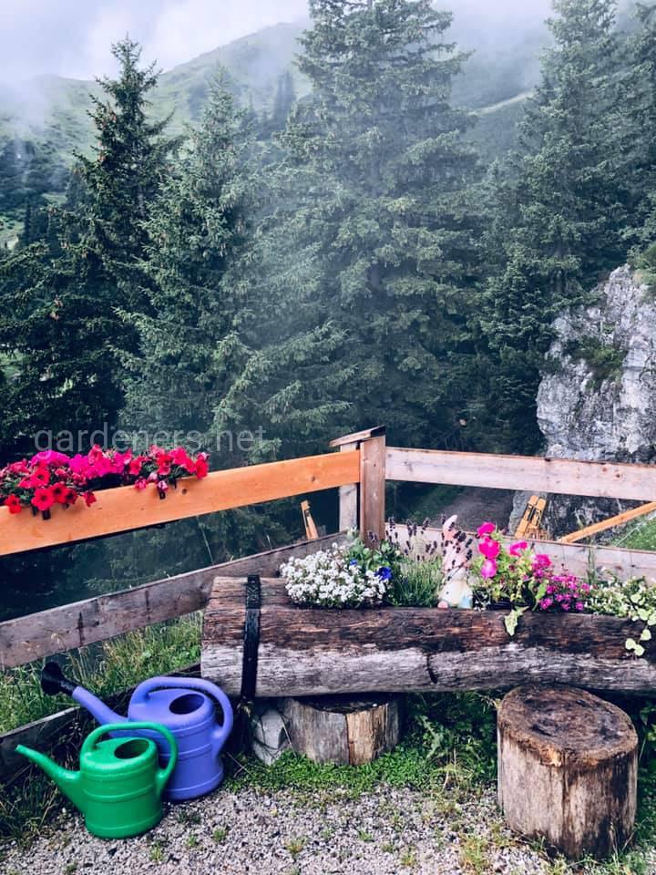 В горах Австрии, Hafelekar, фото А Погорелая