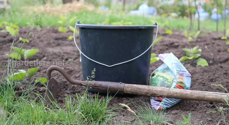 Костная мука, как удобрение для растений