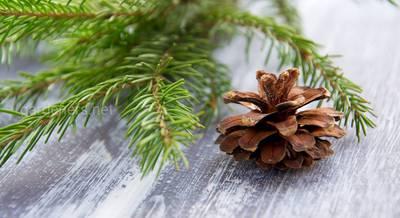 Новогодняя атрибутика в эко-стиле: елки, игрушки, рождественские венки и подсвечники