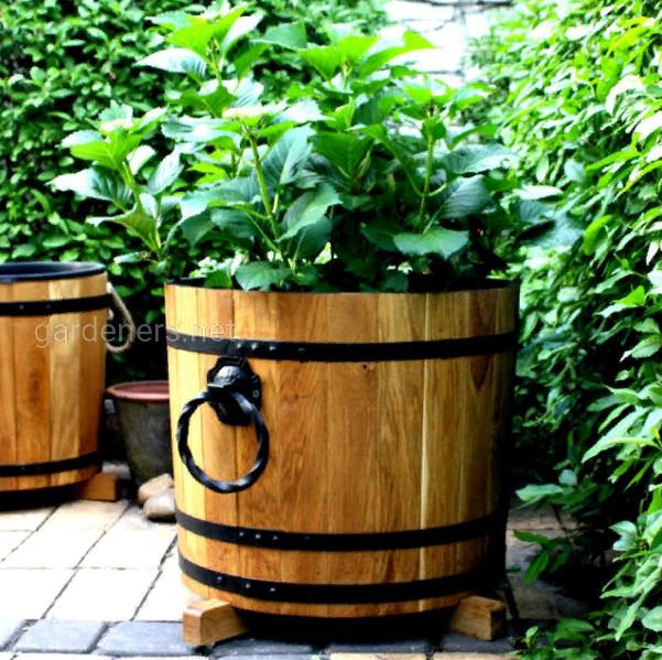 Деревянные кадки (кашло) для цветов, декоративных растений