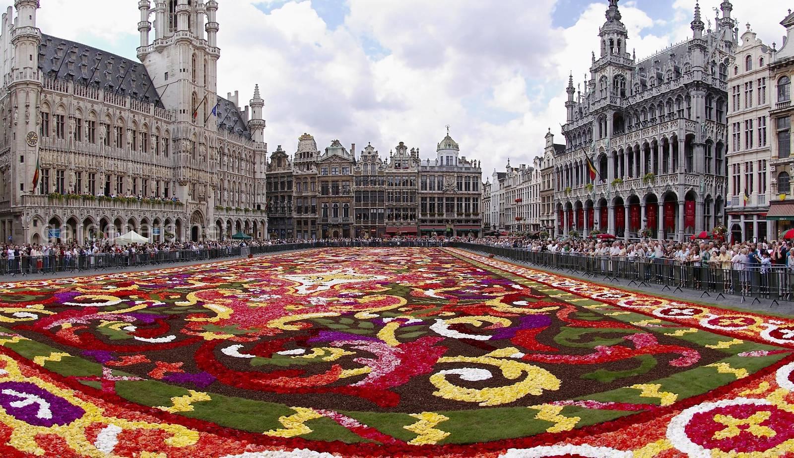 цветочный ковер Брюссель.jpg