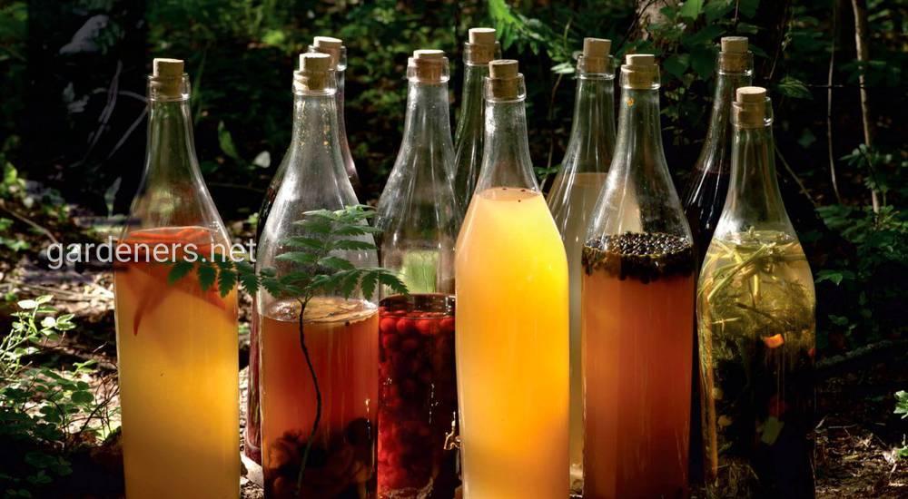Спиртовые и безалкогольные настойки