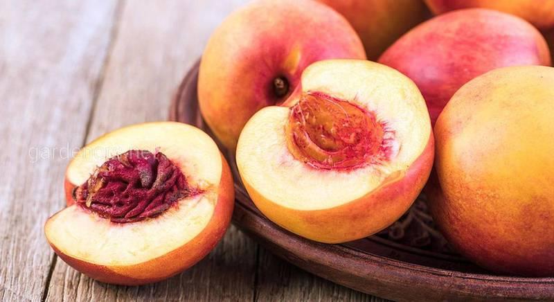 Персик у кулінарії