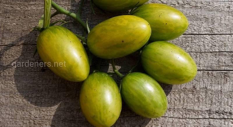 Топ-5 сортов зеленых черри