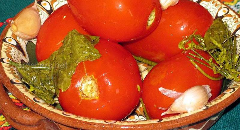 Рецепт неймовірних квашених помідорів