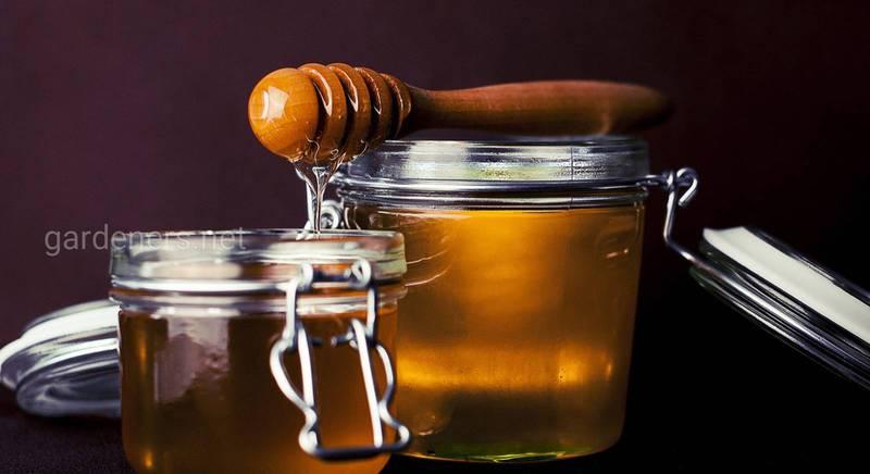 Лонг хізер або мед з вересу