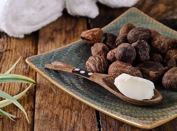 Орехи бабассу