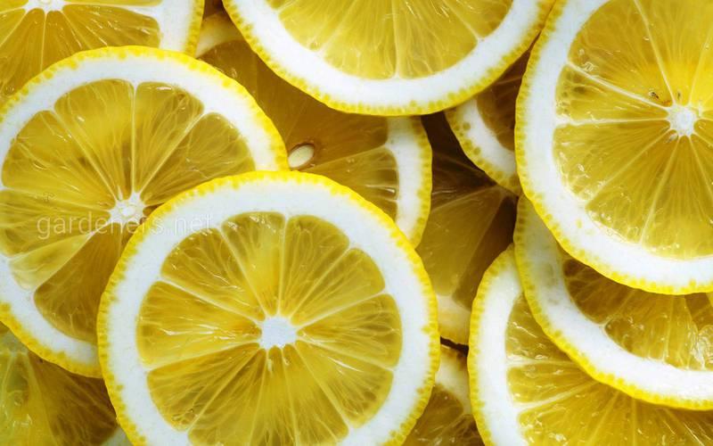 Що можна очистити в будинку за допомогою лимонного соку?