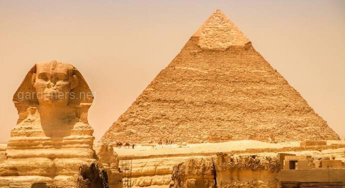 11 цікавих фактів про єгипетські піраміди