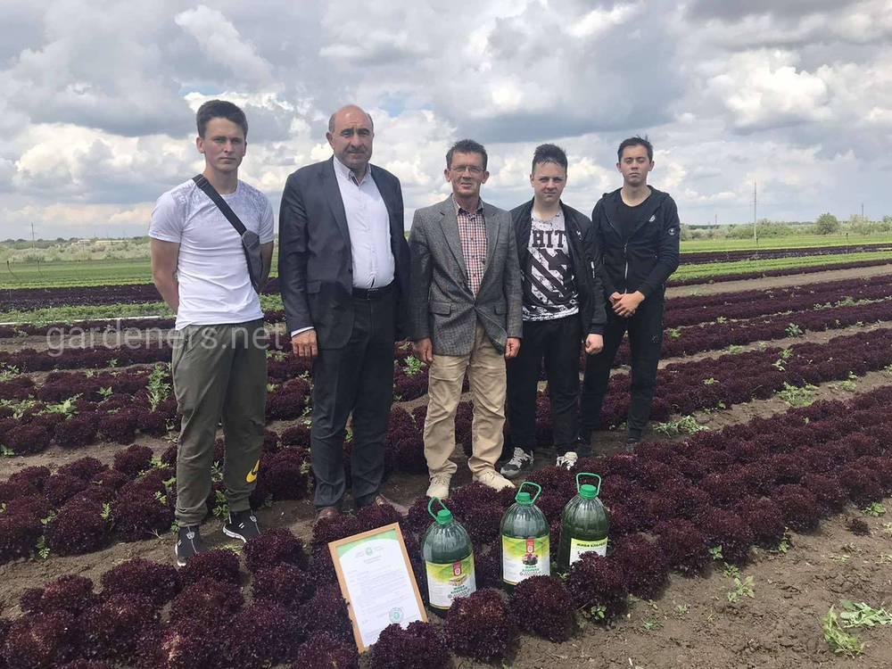 Проект плодоовочівництва для фермерів