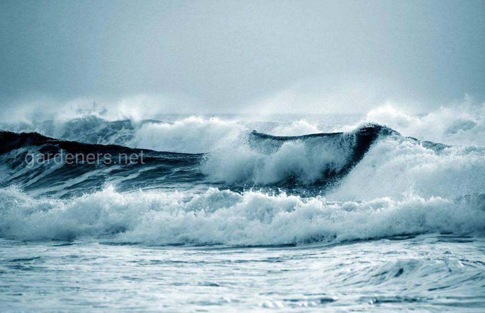 Интересные и удивительные факты о цунами
