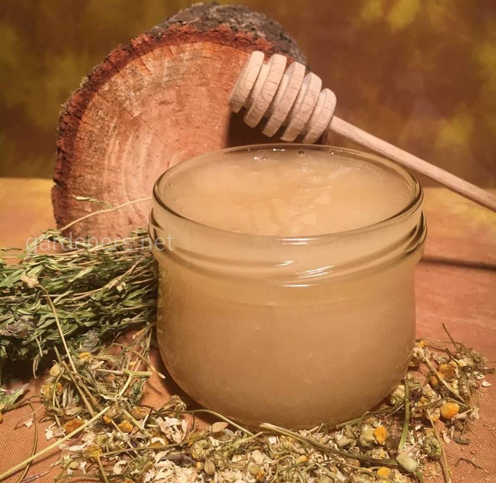 Что такое аккураевый мед и чем он полезен