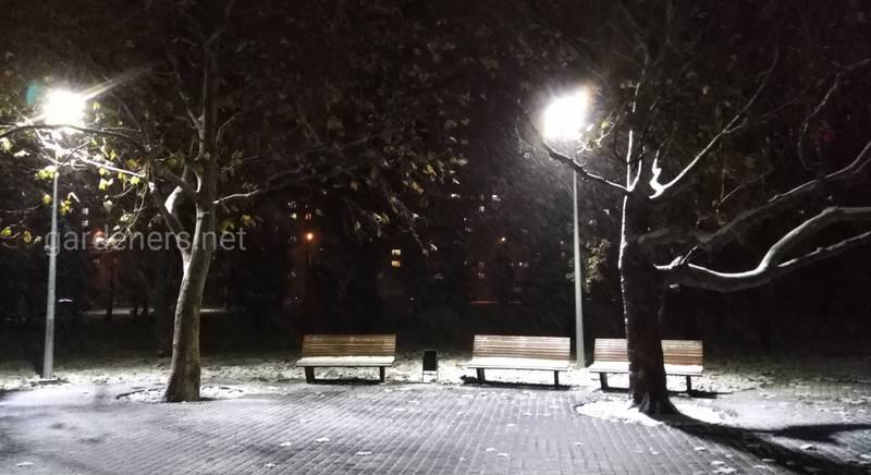 Снег на юге.