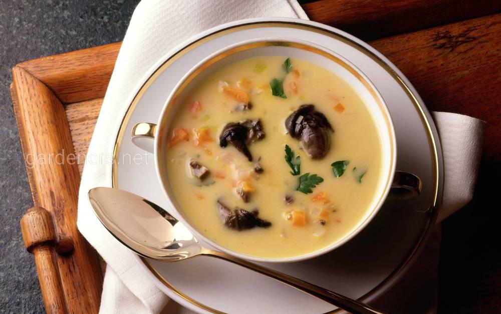 Суп із виноградних равликів