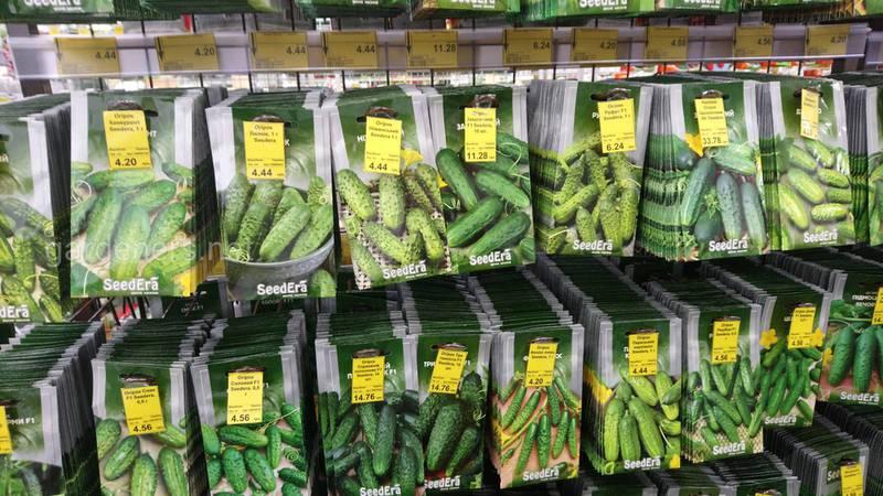Топ-6 найпопулярніших виробників насіння в Україні