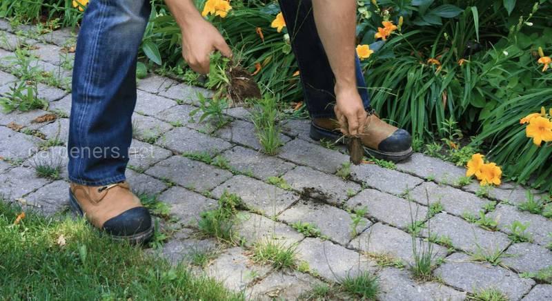 Как избавится от травы между плитками
