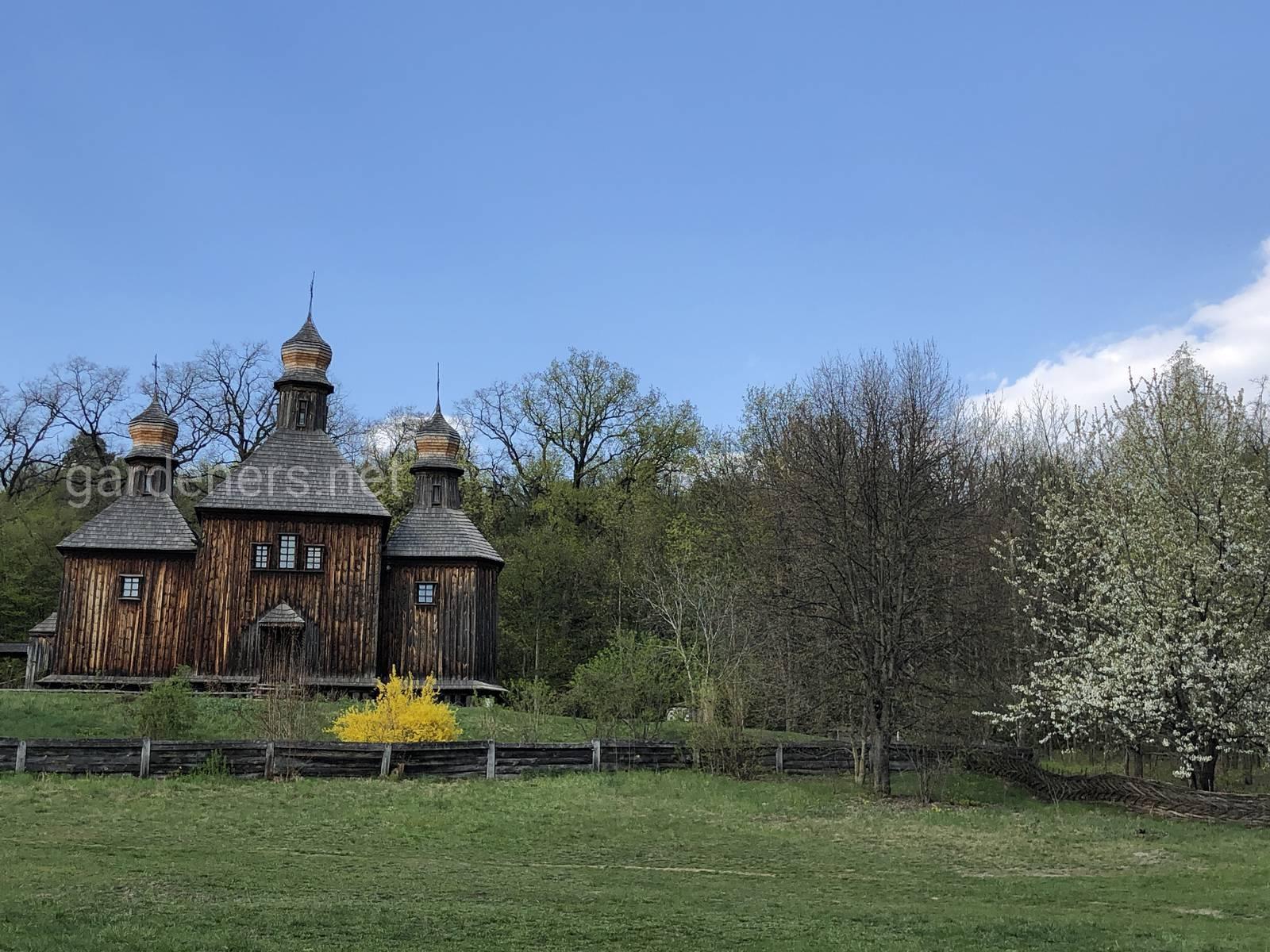 Пирогово в апреле. Садок вишневий коло хати.