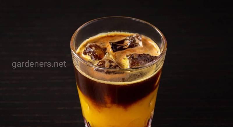 Бамбл кофе. Интересные факты и рецепты