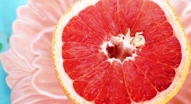 грейпфрут для похудения.jpg