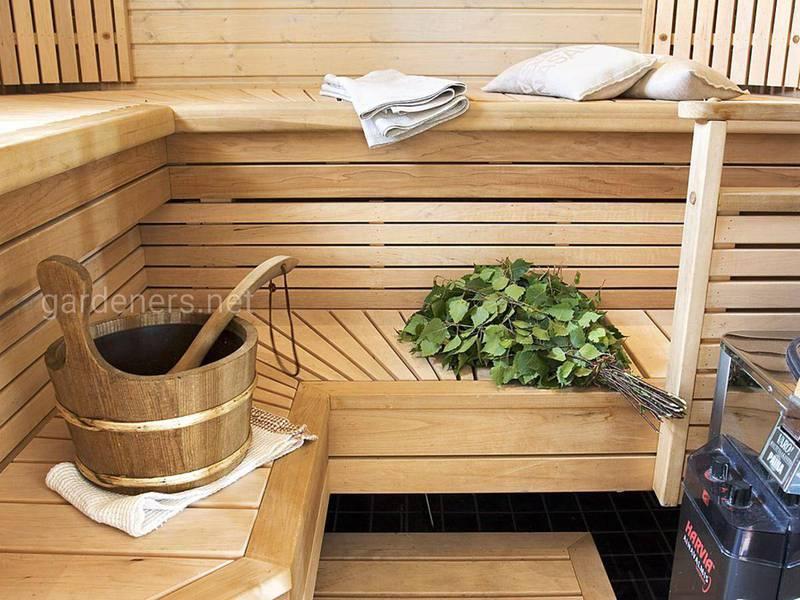 Домашняя сауна в квартире или доме. 5 советов от специалистов