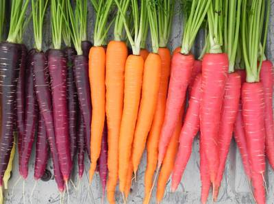 carrots_09.jpg
