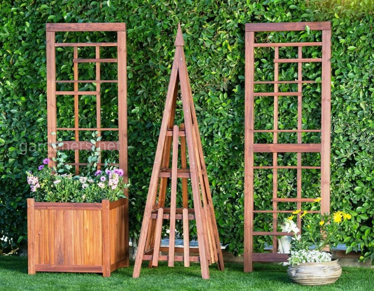 Вьющиеся растения на переносной деревянной шпалере с ящиками у подножья