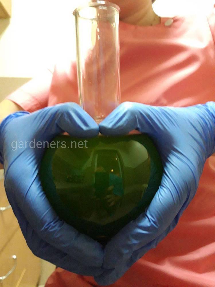 результати досліджень дозволяють рекомендувати Суспензію хлорели