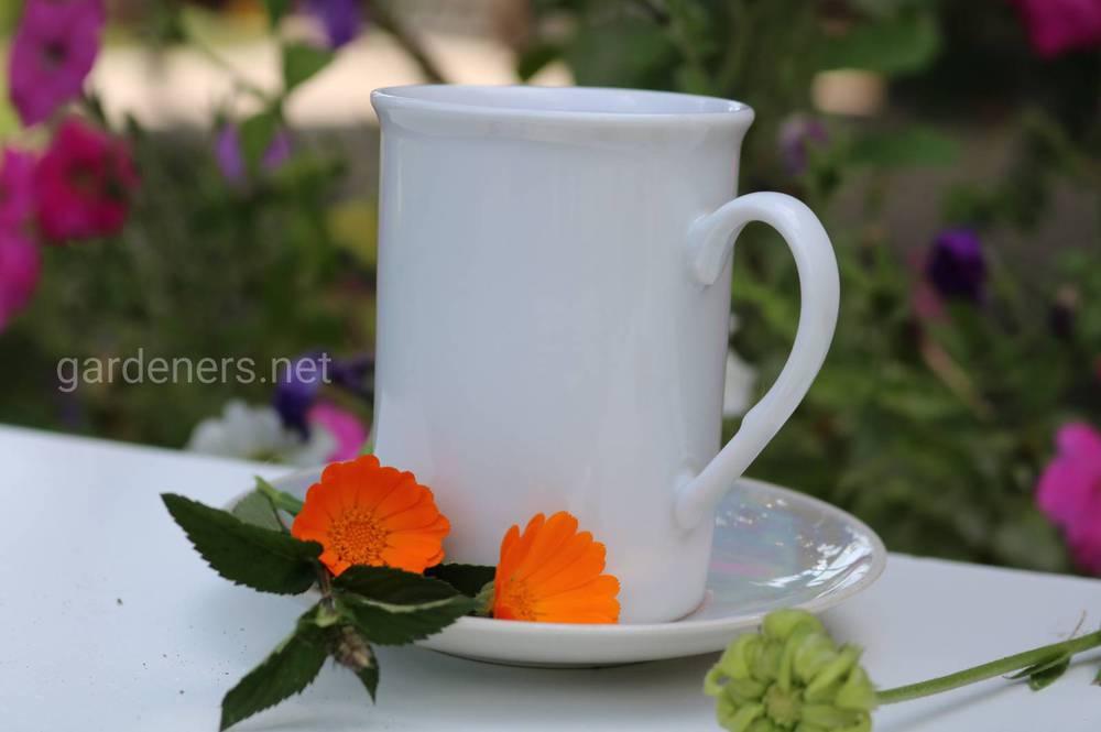 Чай с календулой от кисты